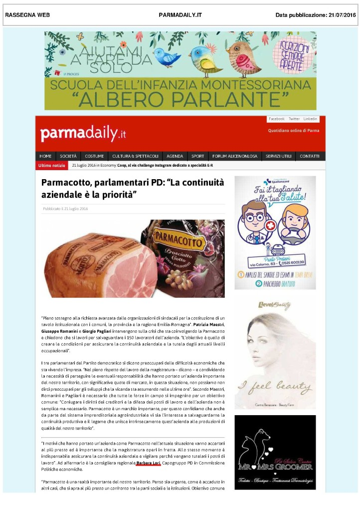 parmacotto 7