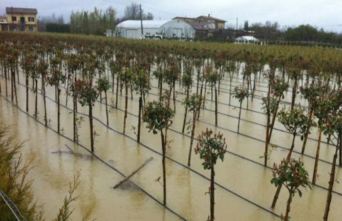 Impegno concreto per gli agricoltori colpiti dai danni climatici