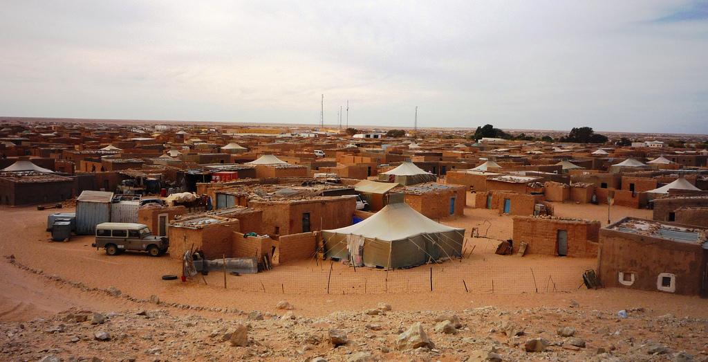 """Saharawi , approvata risoluzione PD, Lori: """"Favorire ripresa negoziati, aumentare fondi regionali per aiuti umanitari"""""""