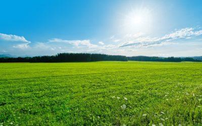 """""""Occhi al paesaggio"""":cresce la rete di osservatori locali"""